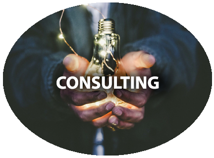 consulting1